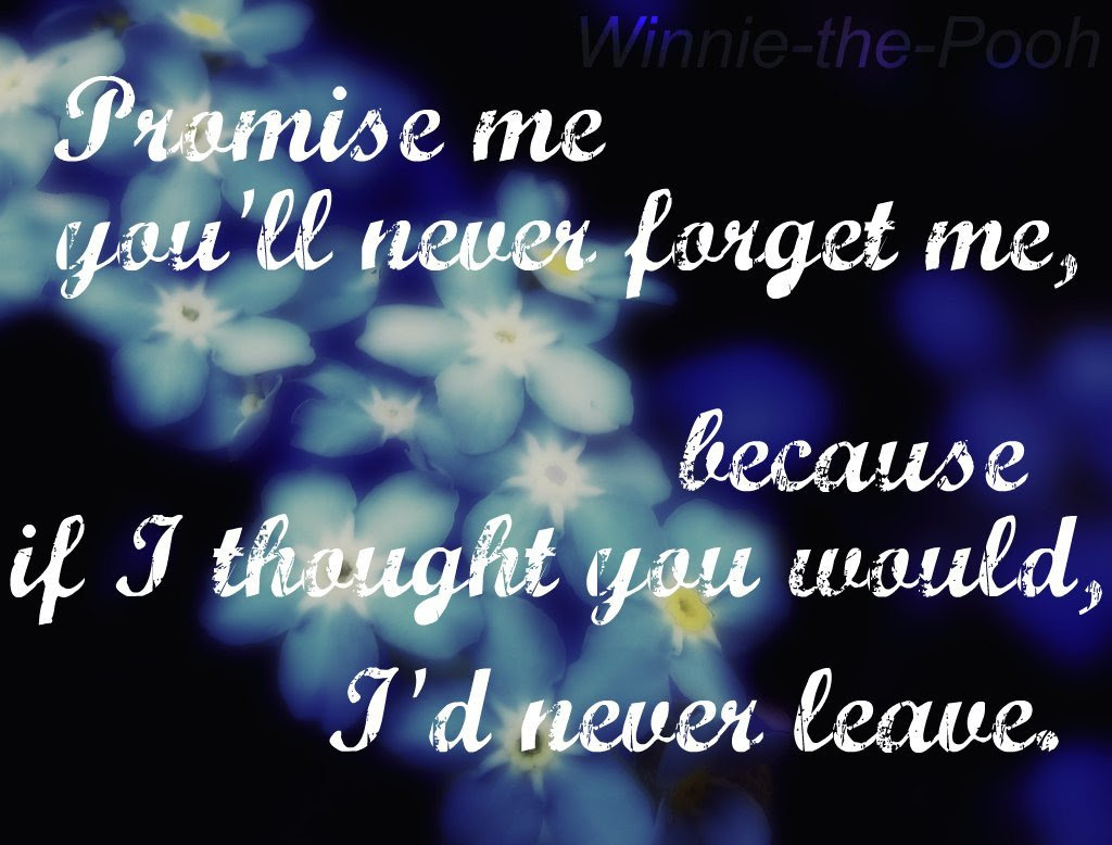 Promise Me Youll Never Forget Me Winnie The Pooh 1024x778