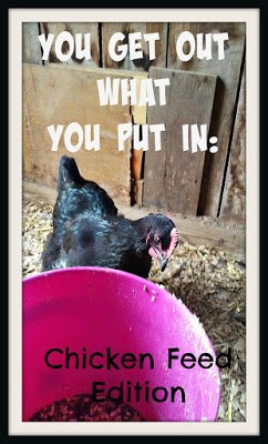 Homestead Blog Hop Feature - You get out what you put in