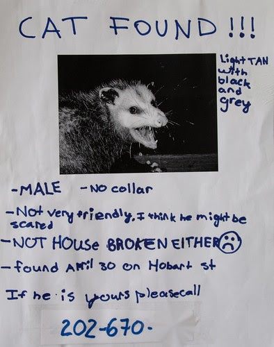 Anyone out there missing a pet?