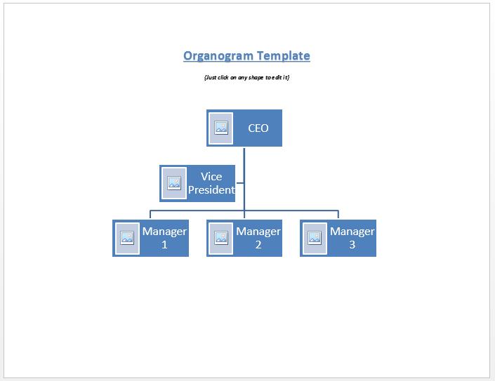Free Organogram   Microsoft Word Templates