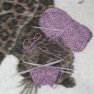 The second violet sock