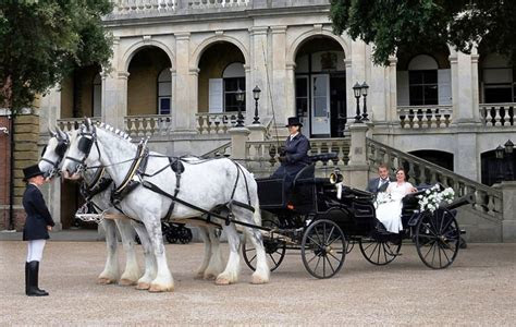 Horse and Carriage   Horse and Carriage Wedding Hire In