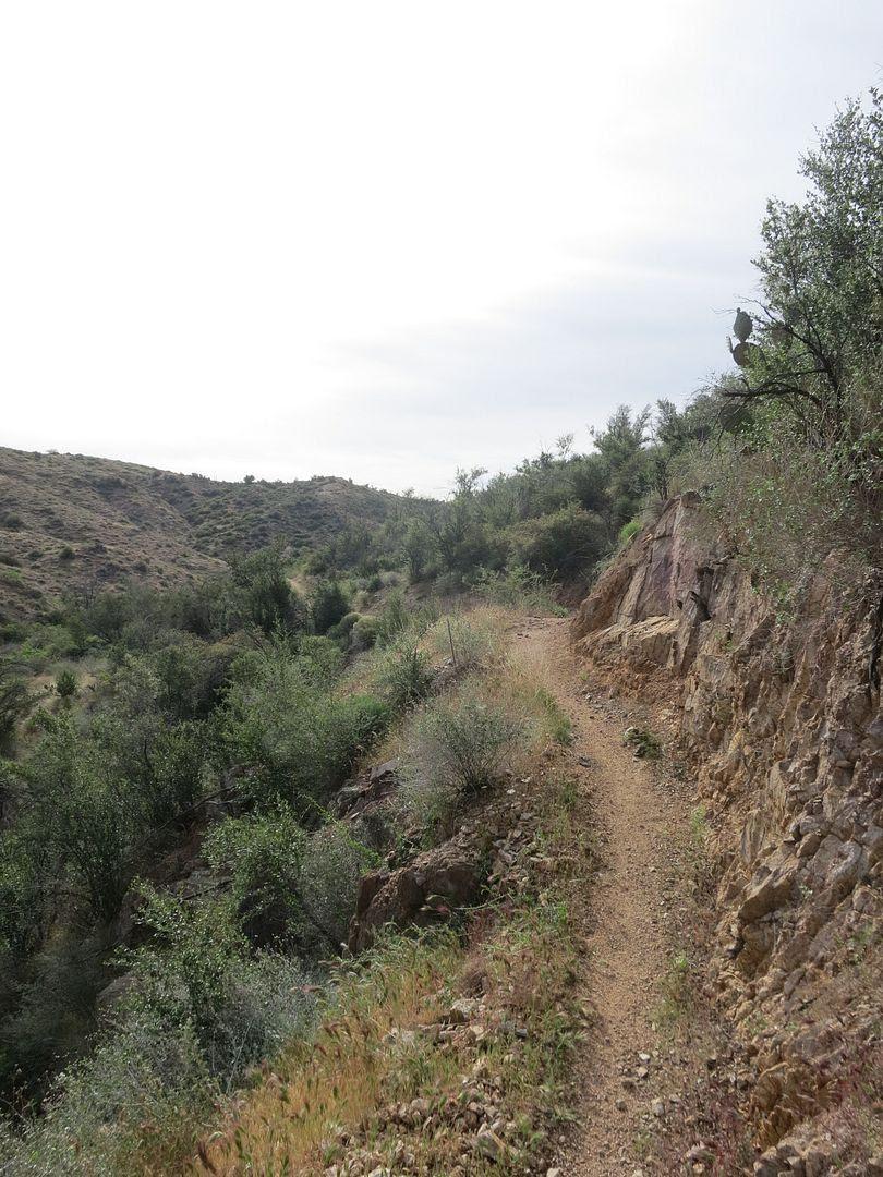 photo Black Canyon Trail 019.jpg