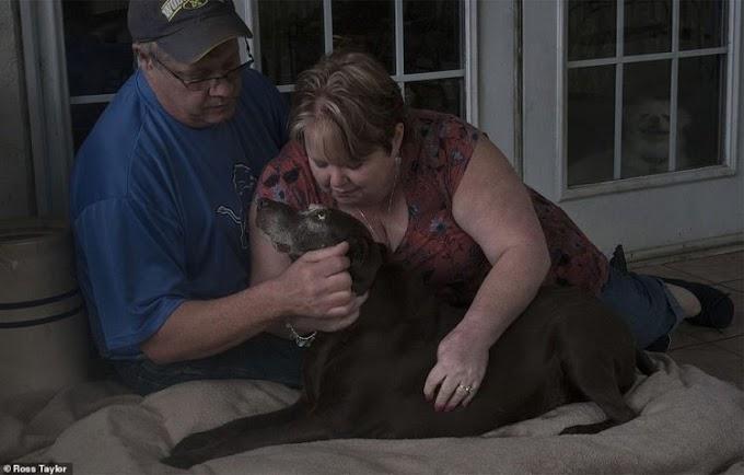Desgarradoras imágenes del dolor de estos dueños después de que sus mascotas fueran sacrificadas