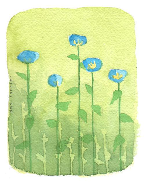 April flowers: moneywort
