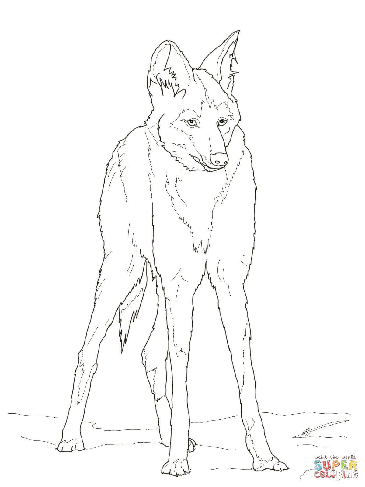 Reddish Maned Wolf coloring page | Free Printable Coloring ...