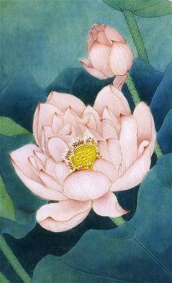 lotus_6