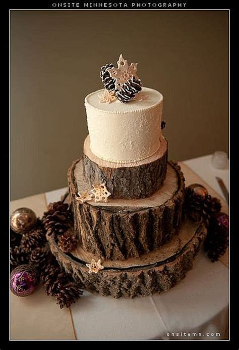 Winter wedding cake w/ edible snowflakes and pine cones