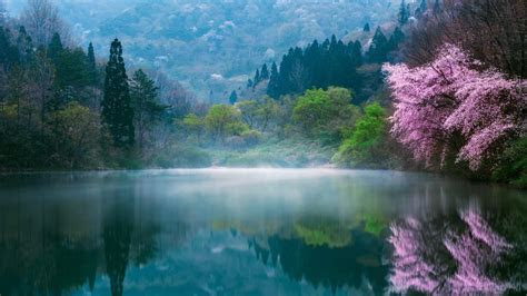 Lake In South Korea Wallpaper   Wallpaper Studio 10   Tens