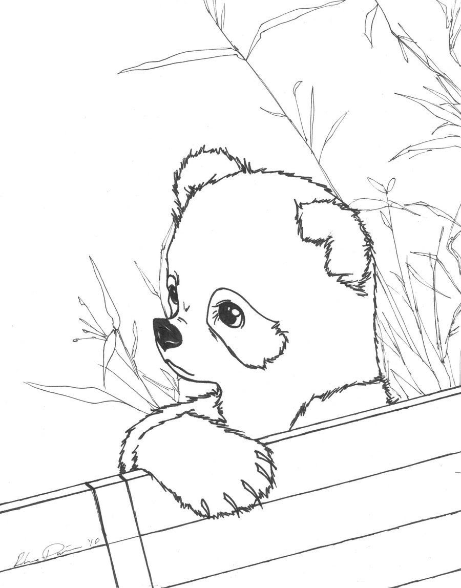 Realistic Panda Coloring Pages at GetColorings.com   Free ...