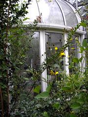 Enchanting Conservatory! 3