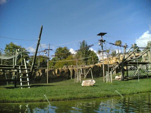 Templo dos primatas