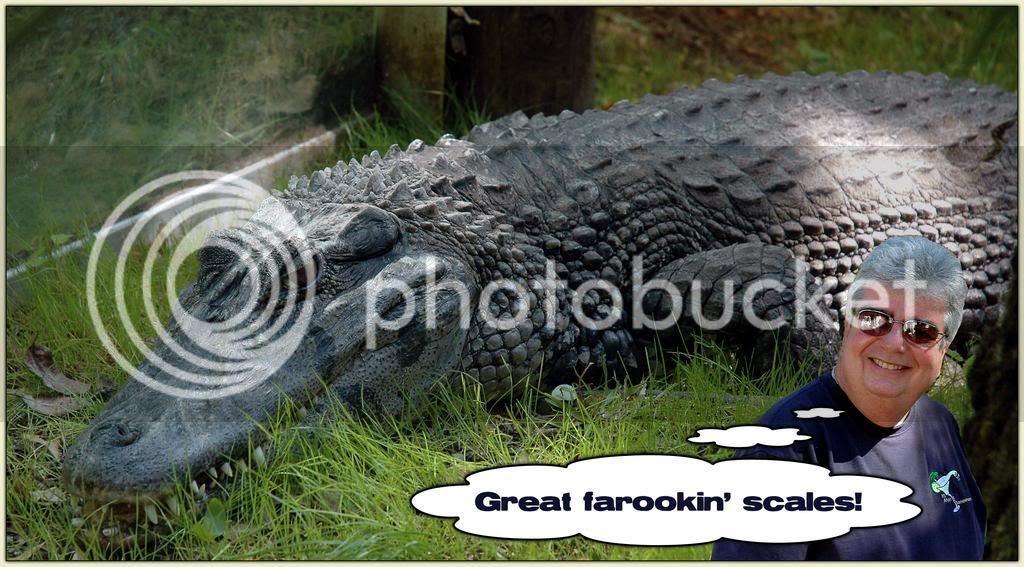 Gator Jimbo