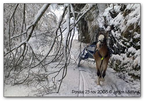 23nov-2008_05