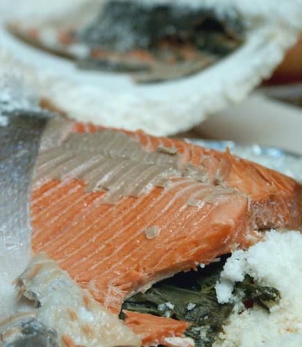 salmonready2