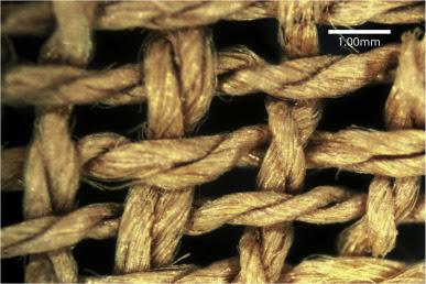 Tissulinegypte2