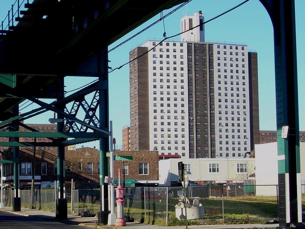 livonia & hinsdale, east new york
