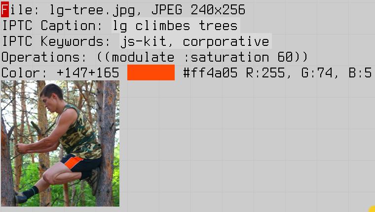pixel color picker