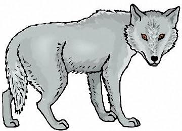 Wolf Ausmalbilder Kostenlos