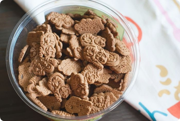 trader joe's ginger cats cookies review