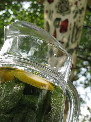 water mint jug