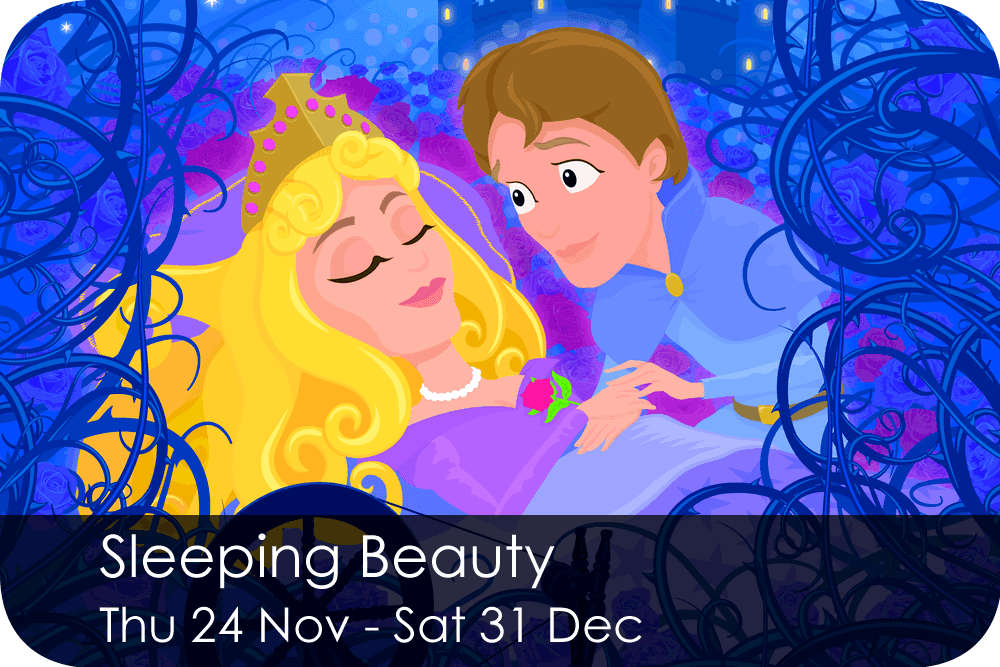Sleeping Beauty Thursday 24 November - Saturday 31 December