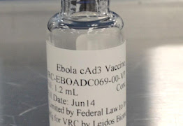 This undated handout photo provided by National Institute of Allergy and Infectious Diseases and GlaxoSmithKline (NIAID/GSK) shows a vaccine candidate, in a vial, that will be used in the upcoming human Ebola trials. Federal researchers next week will start testing humans with an experimental vaccine to prevent the deadly Ebola virus. The National Institutes of Health announced Thursday that it is launching the safety trial on a vaccine developed by the agency's National Institute of Allergy and Infectious Diseases and GlaxoSmithKline. It will test 20 healthy adult volunteers to see if the virus is safe and triggers an adequate response in their immune systems. (AP Photo/NIAID/GSK)