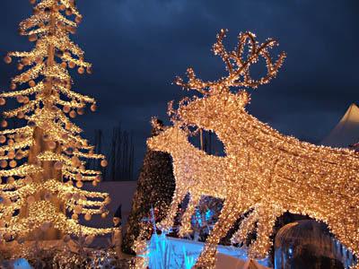 Rennes de Noël à Cannes