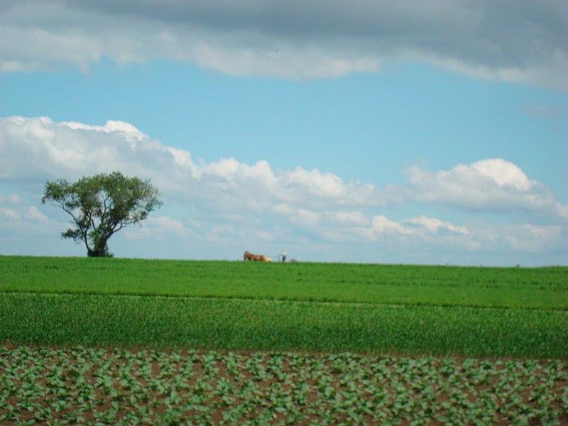 Amish Farm Lancaster County, PA 1