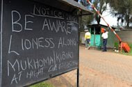 """This notice outside the main entrance of residential houses in Nairobi's Karen suburb, was put up after a lioness was spotted near the area. Wildlife officials have issued warnings to residents near the park to call them """"should they see another lion in their area as it is possible more than one lion had strayed from the park."""" (AFP Photo/Simon Maina)"""