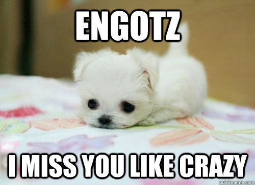 Engotz I Miss You Like Crazy I Miss You Quickmeme