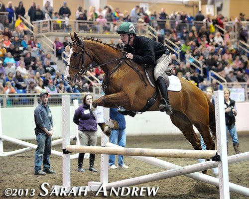 Steuart Pittman and Alluring Punch at the PA Horse World Expo