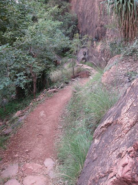 Cudtheringa Track