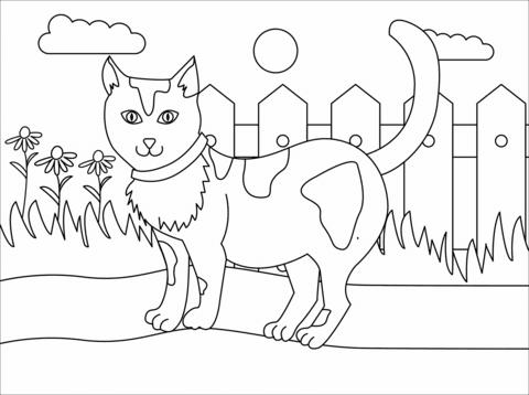 gratis malvorlagen katzen zum ausdrucken