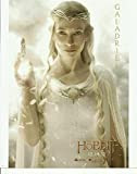 The Hobbit An Unexpected Journey Cate Blanchett as Galadriel 8 x 10 Poster Photo