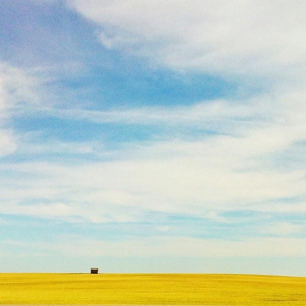 Little house on the prairie (going 110kph down the TransCanada) #alberta #prairie #sky #clouds #canola @mexturesapp #mexturesapp #jj_landscapes