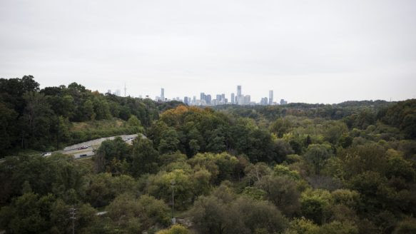 The changing fall colours surround the Don Valley Parkway and can be seen against the downtown skyline from the Leaside Bridge on Millwood Rd.