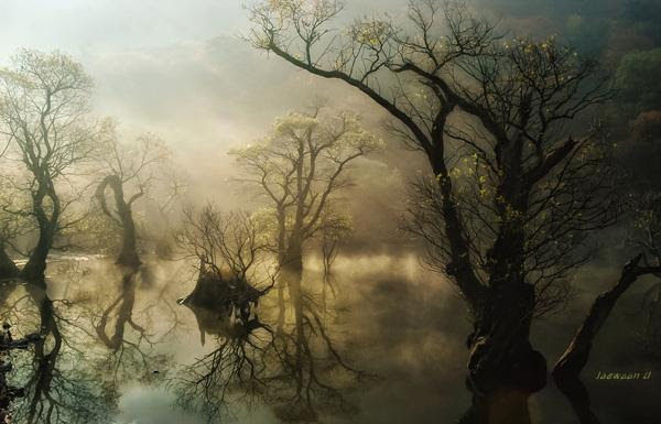 Mysterious - Landscape Photography by Jaewoon u  <3 <3