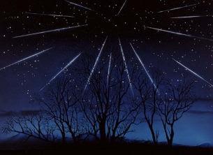 しし座流星群2009