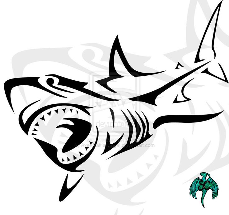 Tribal Shark Drawing At Getdrawingscom Free For Personal Use