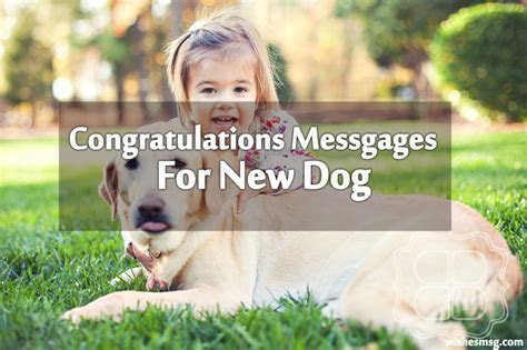 Congratulations Messages For New Dog   WishesMsg
