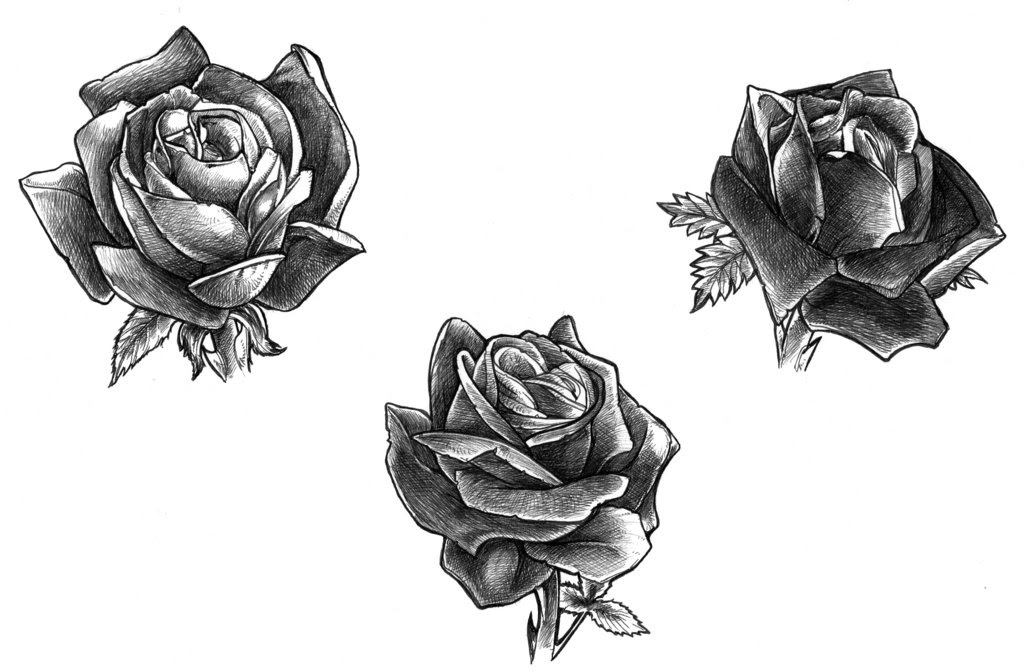 Black Rose Tattoo Designs Ideas Photos Images Popular Top Tattoos