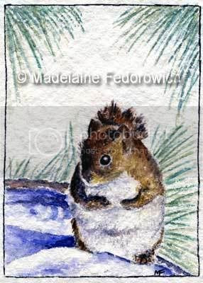 Winter Squirrel ACEO