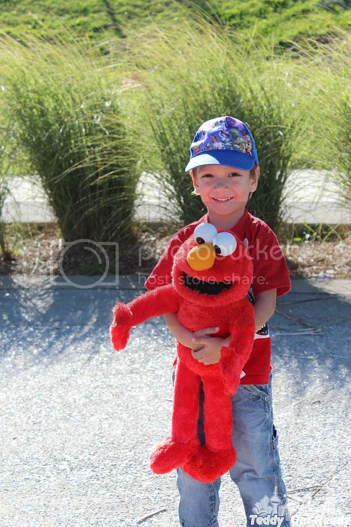 Teddy Elmo
