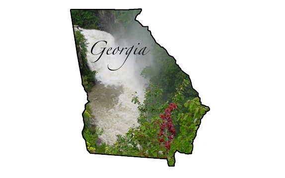 georgia drug assessment