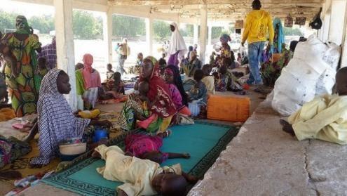 Camarões: Professores e alunos fogem da violência do Boko Haram