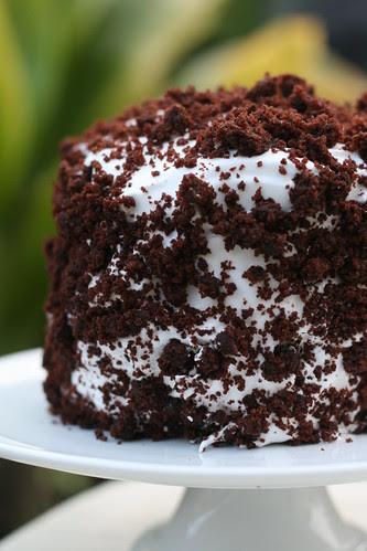 Devils Food White Out Cake (Dorie Greenspan)