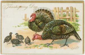 Happy vegetarian Thanksgiving, Edgar Allan Poe fans.  Spare these birds!