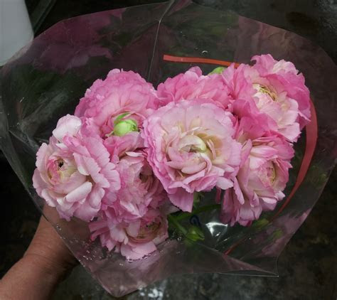 Wedding Flower Prices   Can You Save by Doing it Yourself?