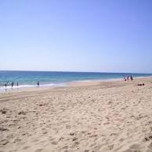 Google News - Preston Beach - Latest